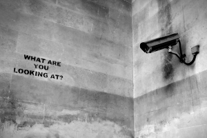 stencil-graffiti- onehundredphotos dot com